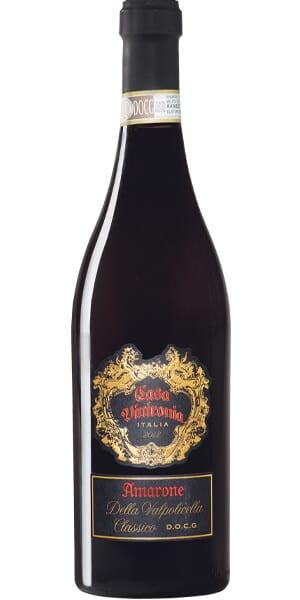 Amarone Viini